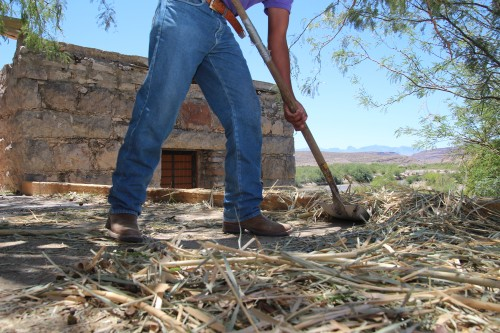 Ivan Sanchez gathers straw that will be placed on the roof of the casita on left, Boquillas, Mexico. (Photo: Lorne Matalon)