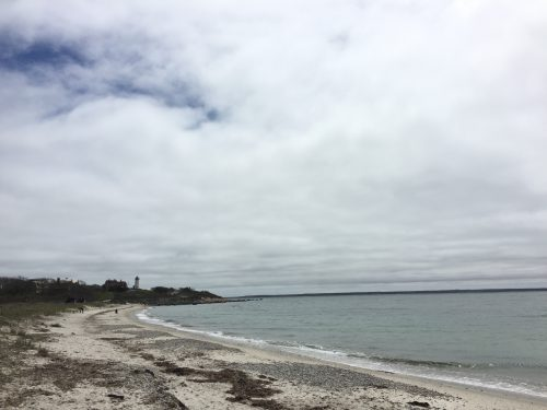 A shoreline near Woods Hole, MA, with the historic Nobska Lighthouse in the distance. (Travis Bubenik/KRTS)
