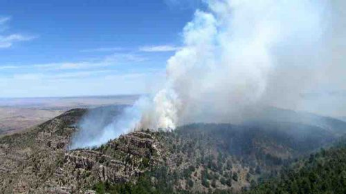 Incident Information System photograph The Coyote Fire burned across the high country of Guadalupe Mountains National Park between May 7 and June 17, 2016.