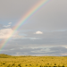 photograph by Rachel A rainbow over the Marfa Plain. The Marfa Plain sustains some of the most robust native grasslands in West Texas.