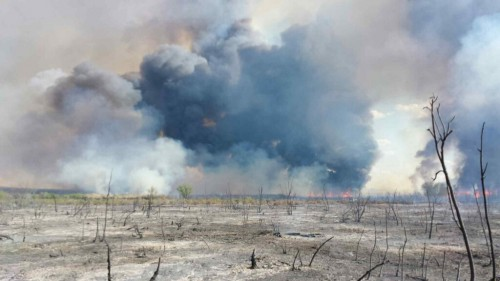 Some of the fire's destruction is shown in this picture from Monday looking toward San Antonio del Bravo in Mexico (Oscar Moreno)