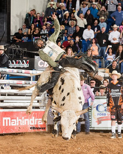 Houston cowboy Craig Jackson rides Gold Buckle from Barrett/Craig/Ruggs in the shootout round for 92.5 points and his 3rd win in 4 years in El Paso. (Todd Brewer)