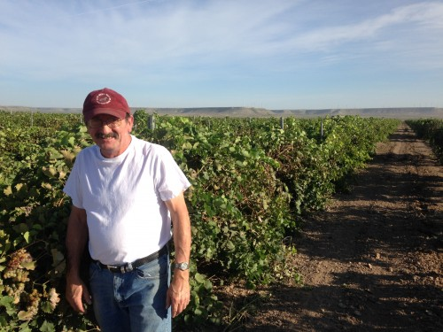 Jean-Michel Duforat, Executive Manager of Operations at Mesa Vineyards (Travis Bubenik / KRTS)