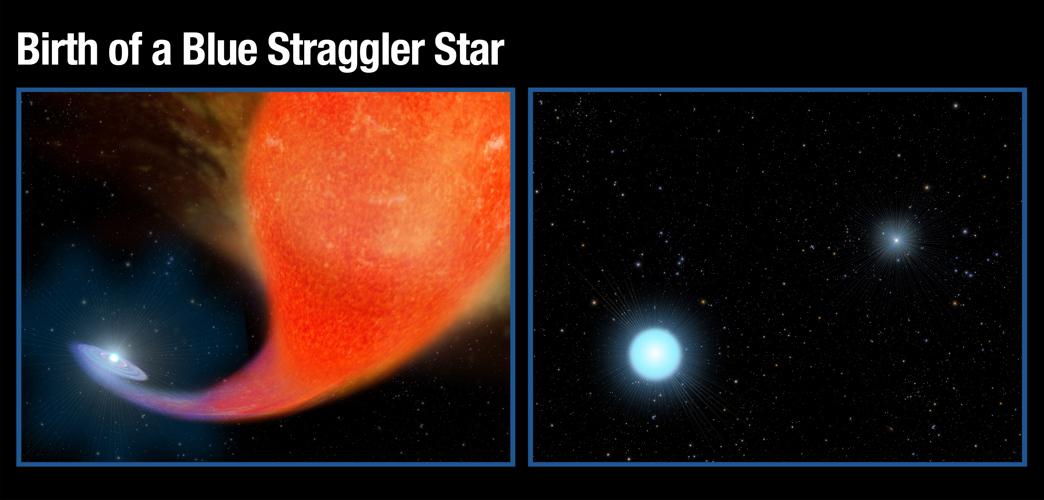 "An artist's rendering of the ""mass transfer"" process that forms a ""blue straggler"" - a normal star that has gained mass from its companion ""red giant"" star, and now appears ""born again"" - bluer, brighter and hotter than it was before. (NASA/ESA, A. Feild [STScI])"