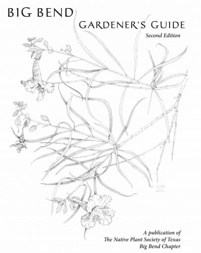 Native Plant Society Guide Is a Companion for Cultivating a